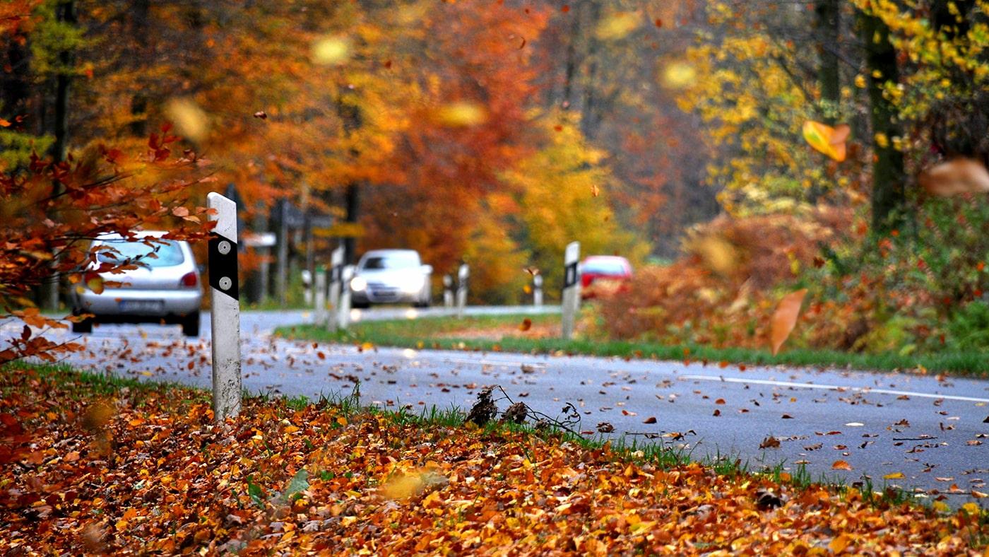 Sicher durch den Herbst mit dem Auto
